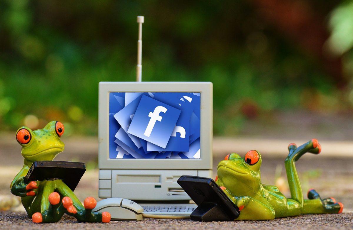 Facebook Firmenprofil richtig nutzen - Marketing ländlicher Raum Mecklenburg